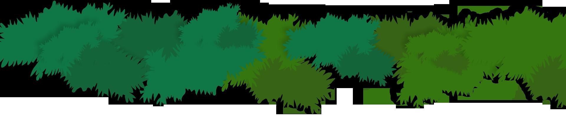Los ecosistemas de México | Conabio